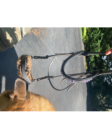Great bitless bridle