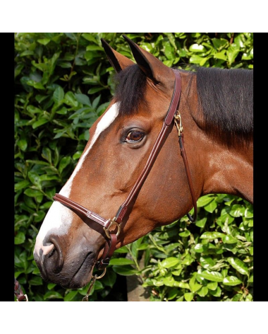 Dy'on Grooming Halter Rolled Leather - New!