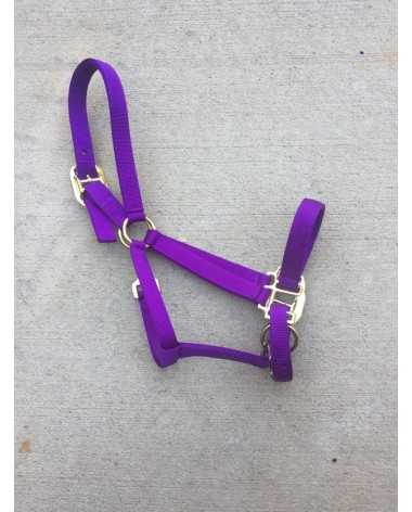 Brand new purple halter