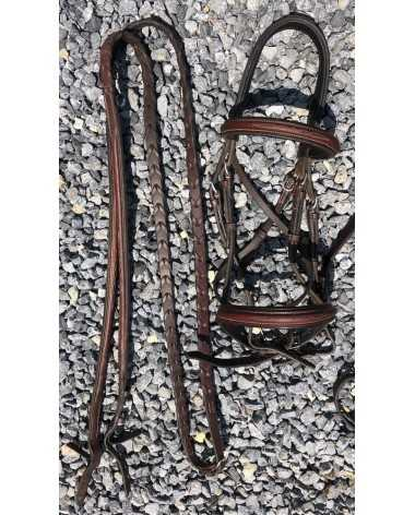 Aramas bridle and reins