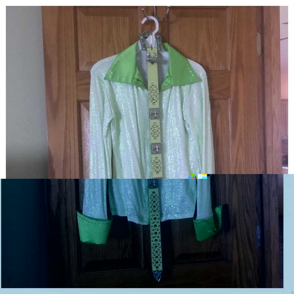 Brand new Western Show Shirt and Matching Blingy Belt