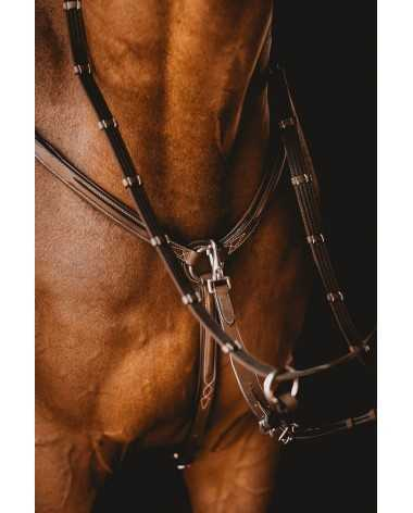 Arion Raised Five-Point Breastplate & Martingale
