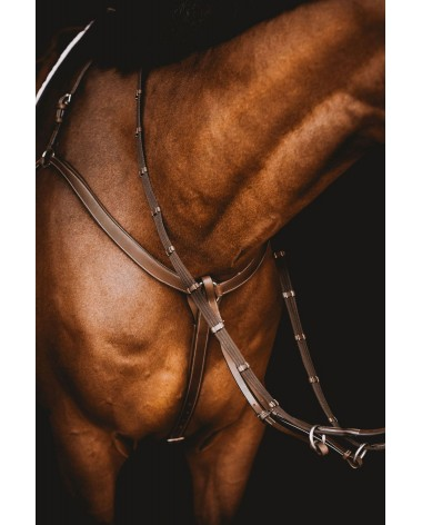 Arion Anatomic Three-Point Breastplate with Martingale