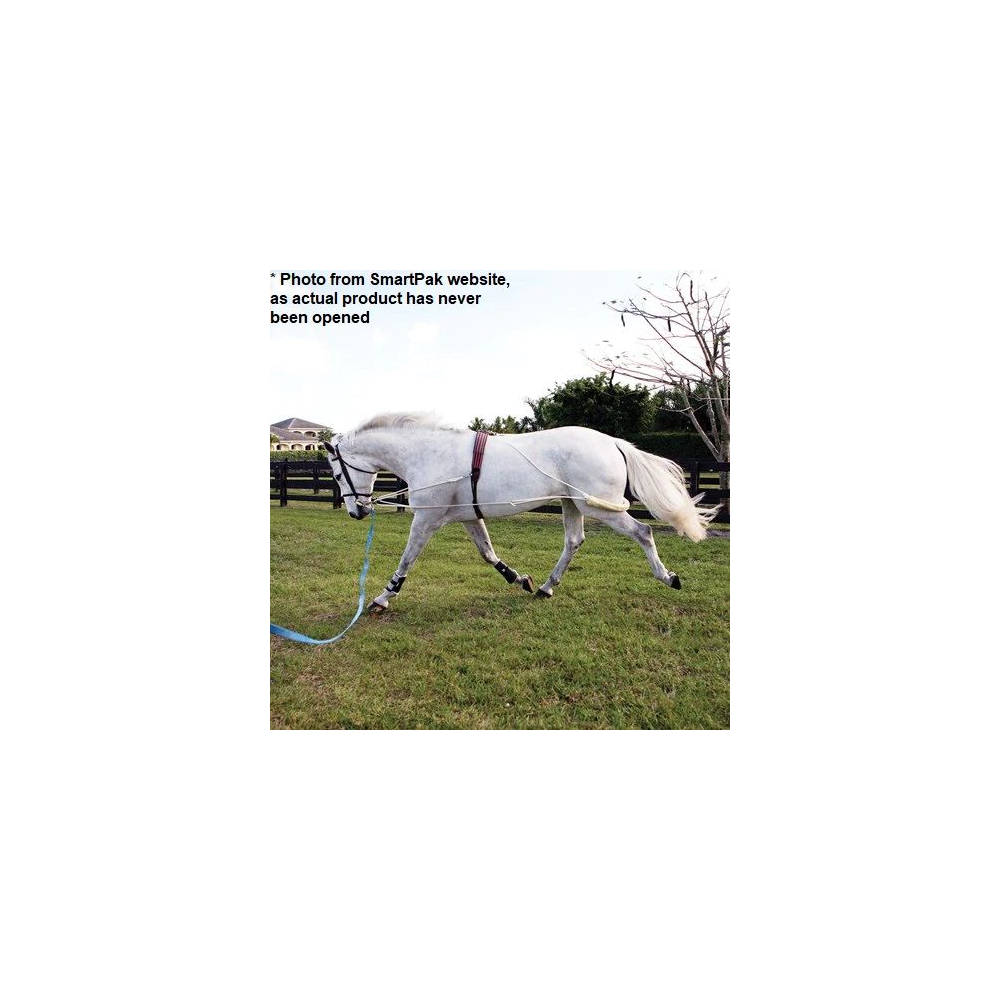 Pessoa Lungeing System - Pony Size - NEVER OPENED!