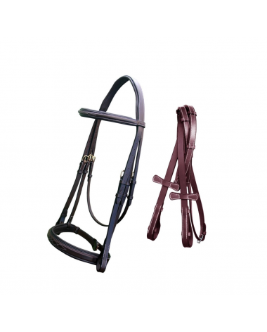 ExionPro Padded Hunter Bridle with Reins