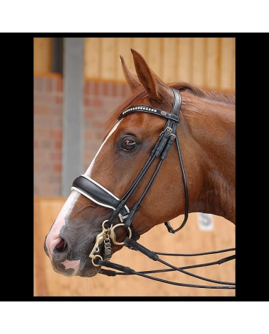 Dy'on Large Crank Noseband Double Bridle - New!