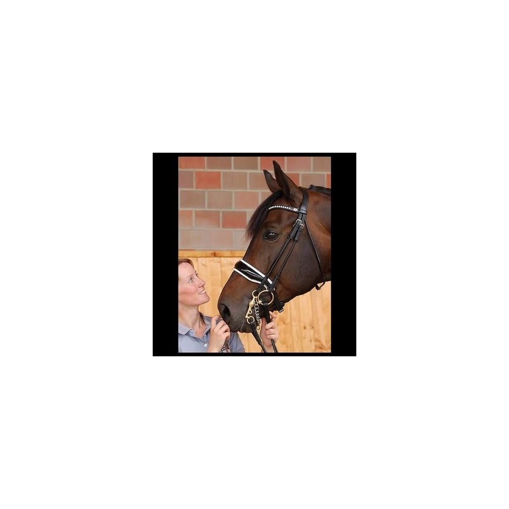 Dy'on Large Crank Noseband Patent Double Bridle - New!